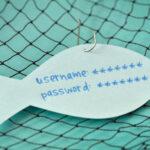 14 consejos para evitar el phishing